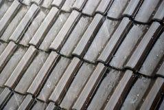 плитки влажные Стоковое Изображение RF