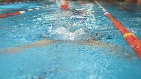 Пловец динамики и пригонки в плавании крышки в бассейне Профессиональный мужской пловец практикуя в бассейне видеоматериал