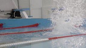 Пловец молодого человека нырнул в бассейн акции видеоматериалы