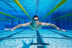 Пловец подводный стоковое изображение rf