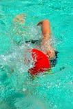 пловец Стоковые Изображения RF
