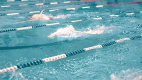 Пловцы высокого угла 3 имея конкуренцию в бассейне отслеживая съемку сток-видео