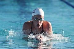 Пловцы средней школы стоковые изображения