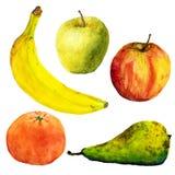 Плодоовощи акварели белизна иллюстрации фингерпринта предпосылки Банан, яблоки, груша, мандарин стоковые фото