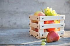 Плодоовощи виноградин, груши и яблока в коробке Стоковые Фото