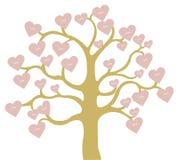 Плодоовощи влюбленности формы сердца на дереве Стоковые Фотографии RF