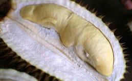 Плодоовощи дуриана Стоковое Изображение RF