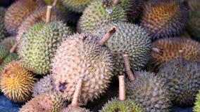 Плодоовощи дуриана Стоковое Изображение