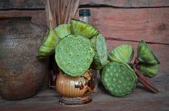 Плодоовощи зеленого цвета вазы священного лотоса с предпосылкой орнаментов Стоковые Фото