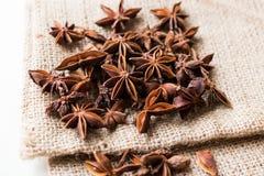 Плодоовощи и семена специи анисовки звезды на мешке Стоковая Фотография RF