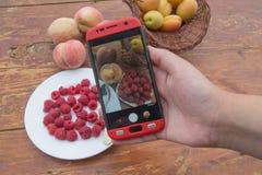 Плодоовощи shootin руки девушки свежие здоровые органические smartphone стоковое фото