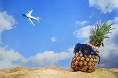 Плодоовощ ананаса с солнечными очками на пляже песка смотря к f Стоковые Изображения