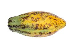 Плодоовощ какао, сырцовые фасоли какао, стручок какао изолированный на белом backgr Стоковое фото RF