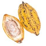 Плодоовощ какао, сырцовые фасоли какао, стручок какао изолированный на белом backgr Стоковая Фотография RF