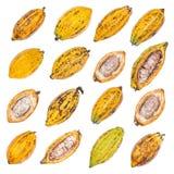 Плодоовощ какао, сырцовые фасоли какао, стручок какао изолированный на белом backgr Стоковые Фотографии RF
