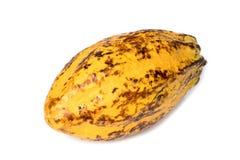 Плодоовощ какао, сырцовые фасоли какао, стручок какао на белой предпосылке Стоковая Фотография RF