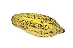 Плодоовощ какао, сырцовые фасоли какао, стручок какао на белой предпосылке Стоковые Фотографии RF