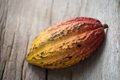 Плодоовощ какао, сырцовые фасоли какао, стручок какао на деревянной предпосылке Стоковое фото RF