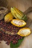 Плодоовощ какао, сырцовые фасоли какао, стручок какао на деревянной предпосылке Стоковое Фото
