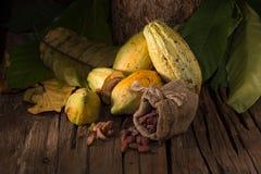 Плодоовощ какао, сырцовые фасоли какао, стручок какао на деревянной предпосылке Стоковые Изображения RF