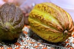 Плодоовощ какао, сырцовые фасоли какао Стоковые Фото