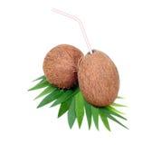 плодоовощ кокоса breadsticks Стоковое фото RF