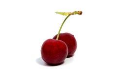 Плодоовощ красного цвета вишни на белой изолированной предпосылке Стоковое Изображение