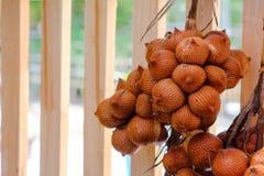 Плодоовощ красного wallichiana salacca тайский Стоковые Фотографии RF