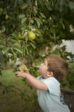 плодоовощ мальчика милый меньший вал рудоразборки Стоковое Фото