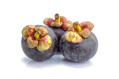Плодоовощ мангустана Стоковое Изображение RF