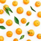 Плодоовощ мандарина на белой предпосылке Плоское положение, взгляд сверху Стоковое Изображение RF