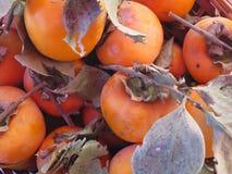 Плодоовощ осеннего плодоовощ kaki сезонный на корзине Стоковое Изображение