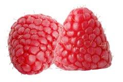 2 плодоовощ поленики изолированного на белой предпосылке Стоковое Изображение