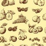 плодоовощ предпосылки Стоковое Изображение RF