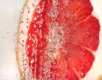 плодоовощ пузырей стоковое фото