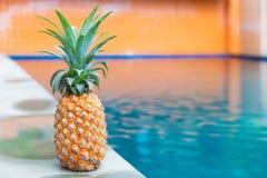 Плодоовощ свежего желтого ананаса троповый около бассейна Стоковое Изображение RF