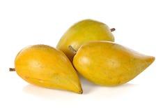 Плодоовощ яичка, Canistel, желтый Sapote стоковые изображения rf