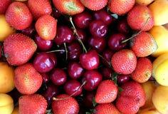 Плодоовощ assorty с серией клубник, абрикосов и вишен как взгляд сверху предпосылки Стоковое фото RF