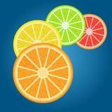 Плодоовощ Cytrus Стоковое Изображение RF