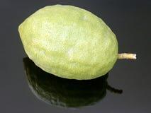 Плодоовощ Etrog ритуальный стоковое фото