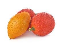 Плодоовощ Gac, джекфрут младенца, колючая горькая тыква, сладостное Grourd или c Стоковое фото RF