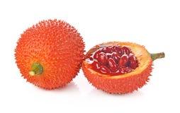 Плодоовощ Gac, джекфрут младенца, колючая горькая тыква, сладостное Grourd или c Стоковое Изображение RF