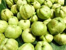 Плодоовощ Guava стоковые фотографии rf
