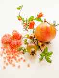 Плодоовощ Pomegranate Стоковое Фото