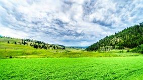 Плодородная обрабатываемая земля среди Rolling Hills вдоль шоссе 5A между Kamloops и Мерритом стоковое фото