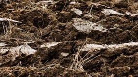 Плодородная черная земля Стоковое Изображение