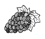 Плоды виноградины, искусство дзэна Нарисованный вручную, doodle, вектор, элементы дизайна zentangle иллюстрация штока