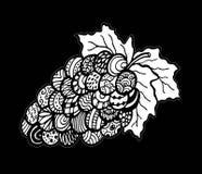 Плоды виноградины, искусство дзэна Нарисованный вручную, doodle, вектор, элементы дизайна zentangle бесплатная иллюстрация