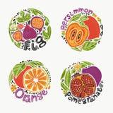 Плоды в круглом наборе 1 иллюстрация вектора