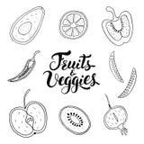 Плоды и Veggies вручают вычерченный набор вектора стоковая фотография rf